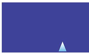 Rise Logo for web